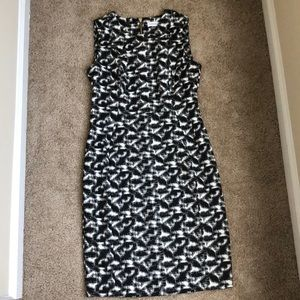 Calvin Klein Fitted Black and White Dress